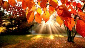 Sonbaharda gezilecek yerler