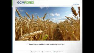 Tarımsal Emtia Fiyatları Yıl Sonunda Ne Olur?